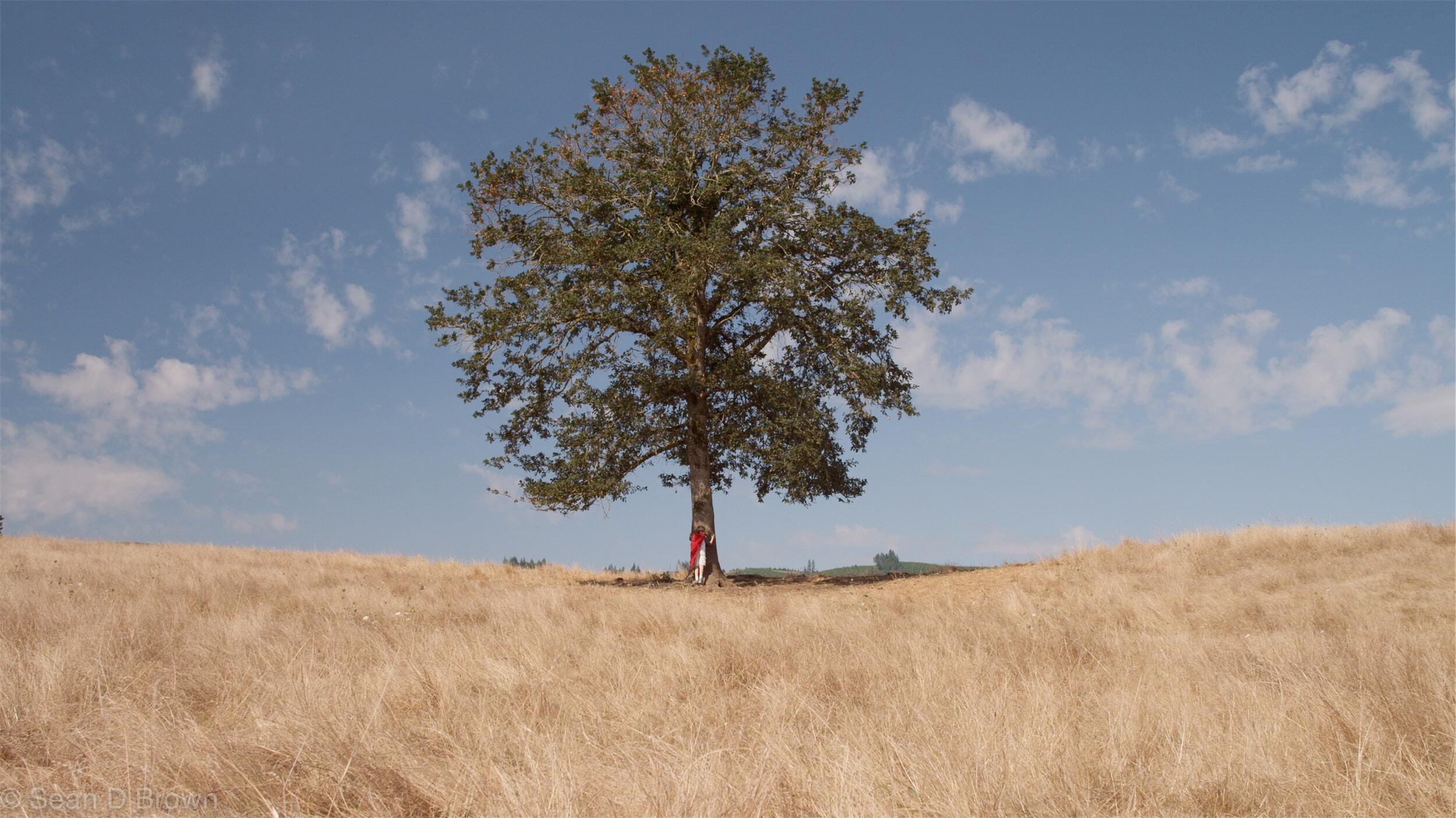 Jedes unserer Produkte pflanzt einen Baum